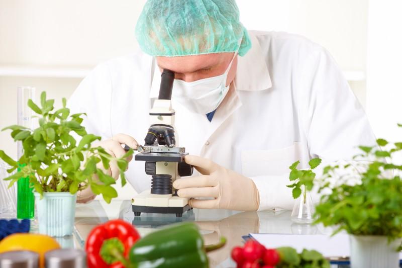 Resultado de imagem para ciencia no alimento